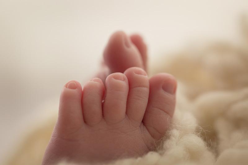 die babyfotografin steiermark