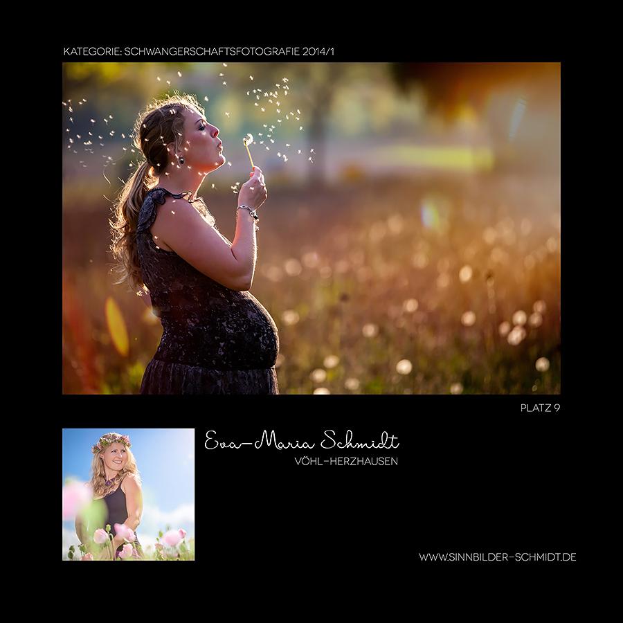 contest-2014-034